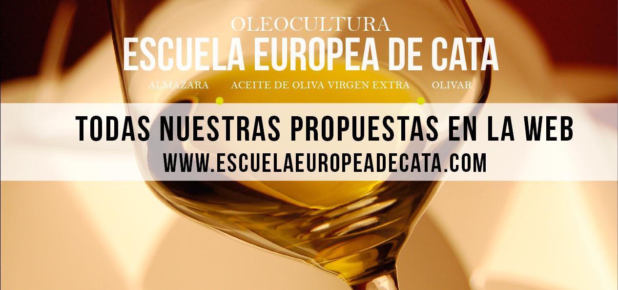 Gastronomía y aceite de oliva virgen extra