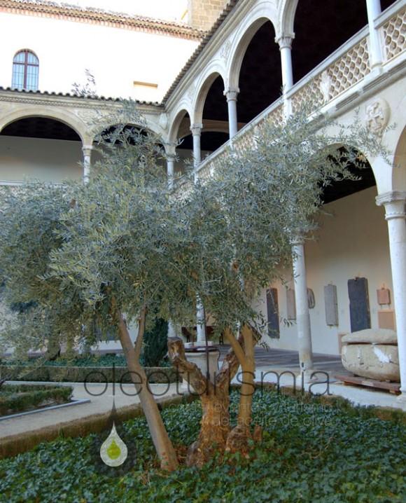claustro-del-Museo-de-Santa-Cruz-en-Toledo