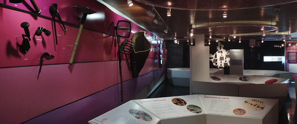 museo-del-vino-socuellamos_enoturismo