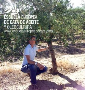 Mar Luna, directora de la Escuela Europea de cata y Oleocultura en la finca de experimentacion de olivar del