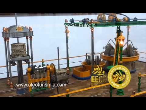 Oleoturismo en Jaén: Un tesoro escondido en Mengíbar