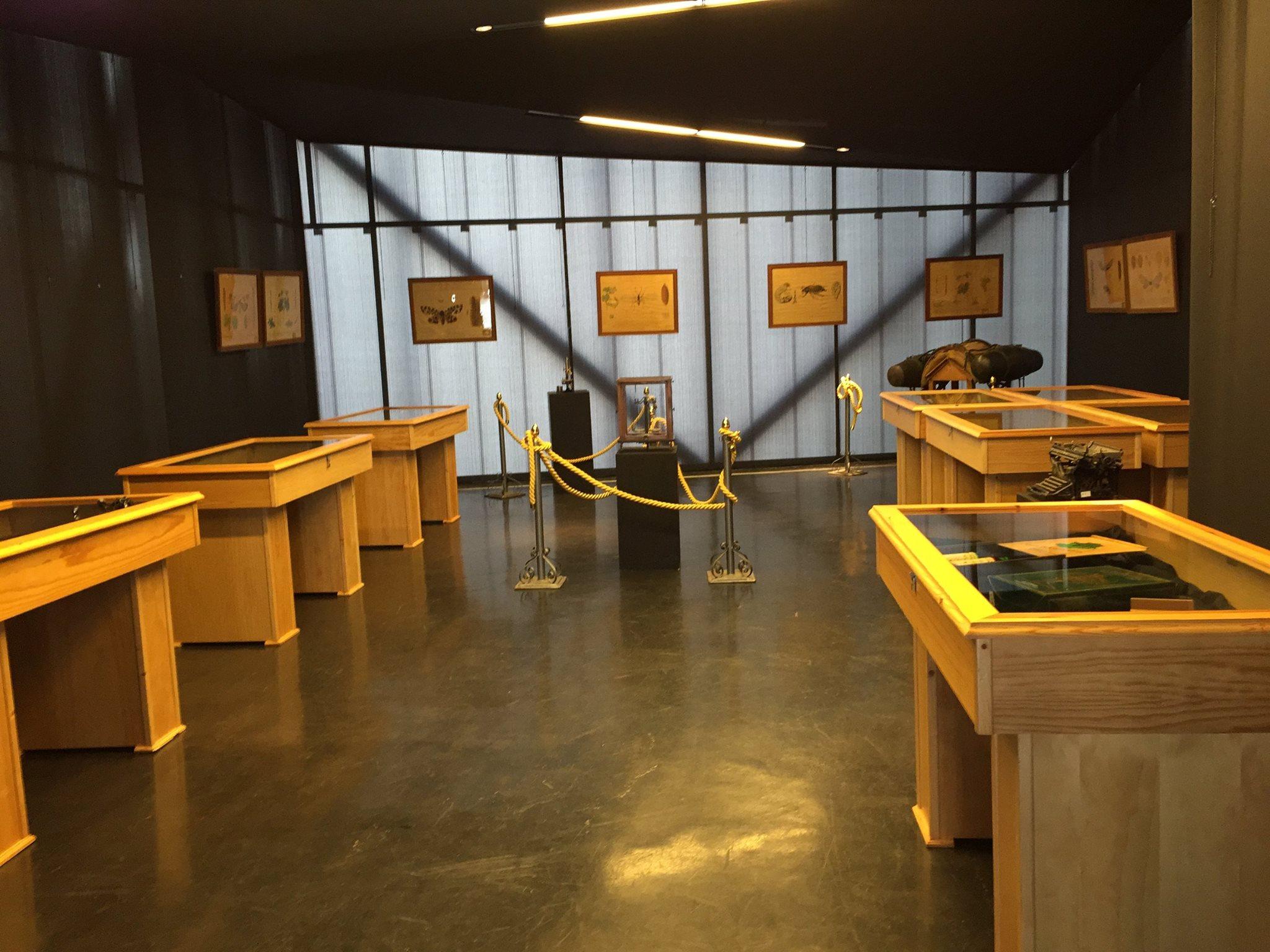 museo-del-vino-almendralejo2