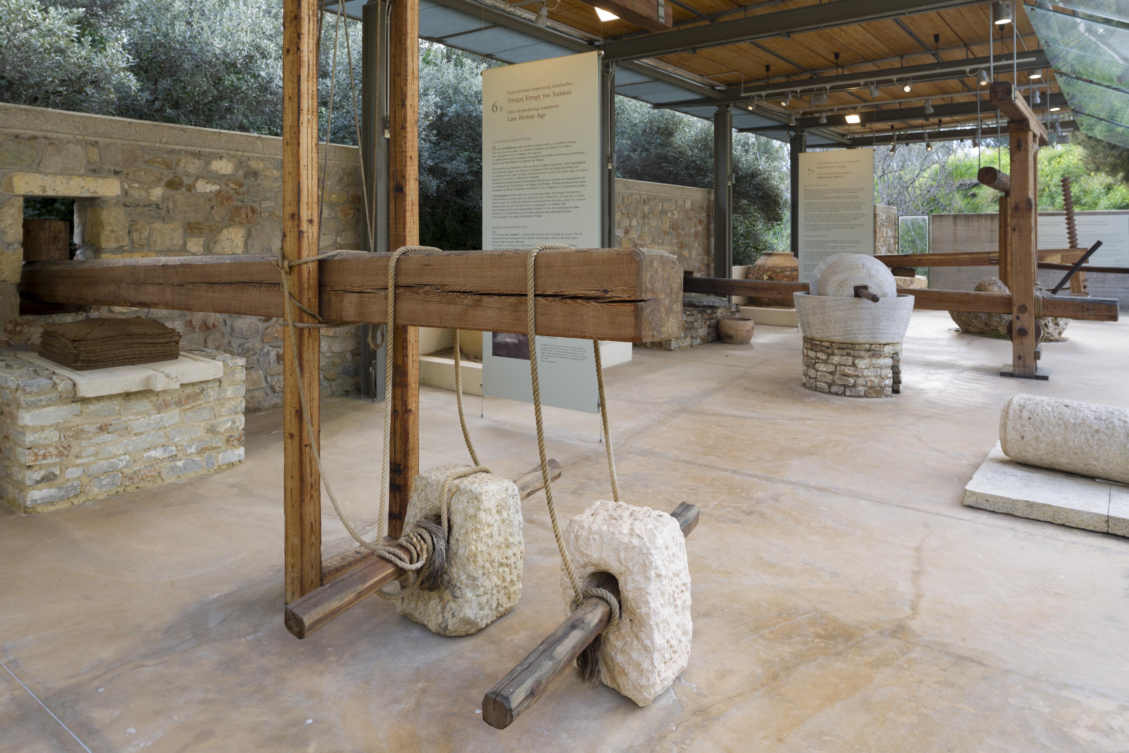 Museo del olivo de esparta