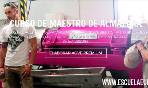 Curso de Maestro de almazara: Cómo montar una almazara para aceite de oliva virgen extra de alta calidad