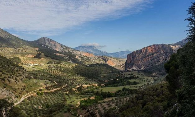 Oleoturismo en Jaén: Hacienda Santa Cristina – Otíñar