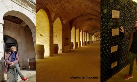 Enoturismo y Oleoturismo gracias a Carlos III:  Bodega Real Cortijo de Aranjuez
