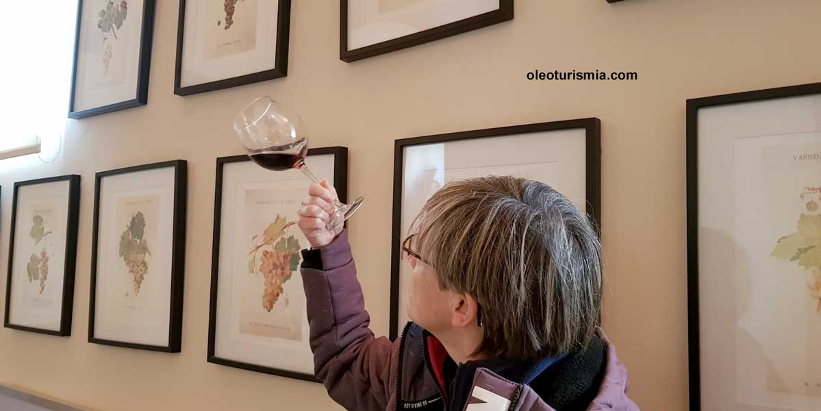 La visita termina con una cata de vinos