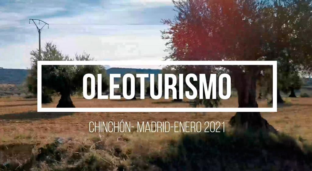 Oleoturismo en Madrid: Chinchón, Anís, Plaza y Mesón (con almazara dentro)